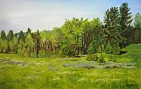 Idaho Meadow and Trees
